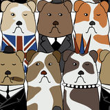 Pattern with English bulldogs Royalty Free Stock Photography