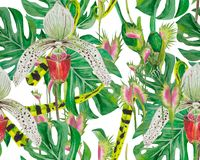 Pattern of exotic plants: orchids, flycatcher and monstera. Tropical jungle in the pattern. Watercolor drawing can be used as a light playful background Royalty Free Stock Image