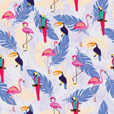 Pattern with exotic tropical birds and Feathers. Stock Photo