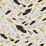 Pattern of feathers Stock Image