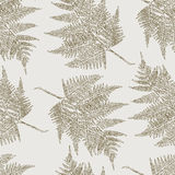 Pattern with fern. Vector background with a leaf of a fern Stock Image