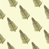 Pattern of a fern on  diagonal. Pattern of a fern on a diagonal Royalty Free Stock Image