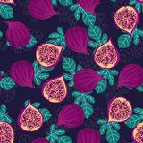 Pattern with figs and leaves. Seamless pattern with whole and half pieces of figs and leaves on dark blue background, tropical fruit wallpaper Royalty Free Stock Photos