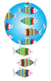 Pattern fish. Pattern with the image of multi colored fish Stock Photos