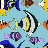 Pattern with fish. Seamless pattern with different colorful tropical fish on blue background Royalty Free Stock Photos
