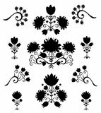 Pattern floral  black & white Stock Photography