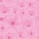 Pattern floral seamless Royalty Free Stock Photos