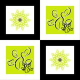 Pattern flower square background Stock Photo