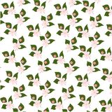 Pattern with flowering tree branches on green background. Endless texture decoration with white flowers and flying royalty free illustration