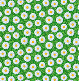 Pattern with flowers Stock Photos