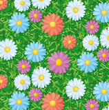 Pattern with flowers Royalty Free Stock Photos