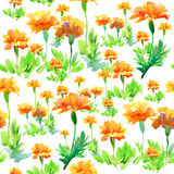 Pattern with flowers Royalty Free Stock Image