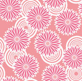 Pattern of flowers. Royalty Free Stock Image