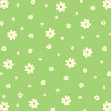 Pattern from flowers. Vector pattern from flowers on green background Stock Photography