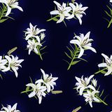 Pattern with flowers of white lily on a blue background. Vector stock illustration