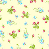 Pattern with forget-me-not flowers and  roses Stock Photos