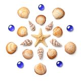 Pattern in the form of a circle made of shells, starfish and blu royalty free stock photos