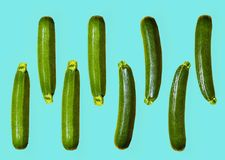 Pattern of fresh juicy courgettes on a blue background. copy spa. Ce Stock Images