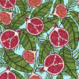 Pattern of fruits pomegranate and fig on the color of leaves. On a blue background. Pattern of fruits pomegranate and fig on the color leaves. On a blue Stock Images