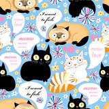 Pattern of funny cats. Seamless pattern of funny cats on a floral background Royalty Free Stock Images
