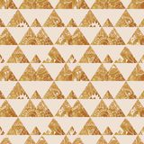 Pattern geometric with triangle and plant elements Stock Photography