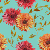 Pattern of gerbera flowers in watercolor Stock Images