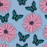 Pattern of gerberas and butterflies. vector illustration. Drawing by hand. Royalty Free Stock Images