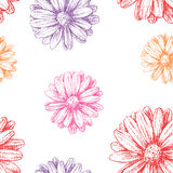 Pattern of gerberas Stock Images