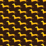 Pattern with golden dachshund Stock Photo