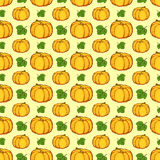 The pattern of the gourds. Royalty Free Stock Photos