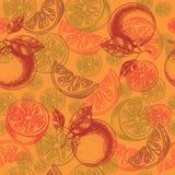 Pattern grapefruit Royalty Free Stock Image