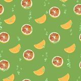 Pattern with grapefruit slices, orange with air bubbles. Vector illustration. Royalty Free Stock Photography