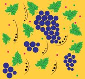 The pattern of grapes. Stock Image