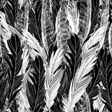 Pattern graphic bird feathers Royalty Free Stock Photography