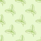 Pattern with green clover leaves Stock Photo
