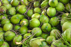 Pattern of green coconuts. Royalty Free Stock Photos