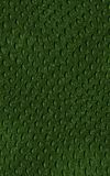 Pattern of green crocodile skin.  Royalty Free Stock Image