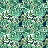 A pattern of green decorative mottled palm leaves. Seamless pattern of watercolor tropical leaves with veins on a dark blue background Stock Photo