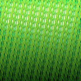 Pattern from a green grass Royalty Free Stock Photo