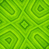 Pattern of green leaf Royalty Free Stock Images