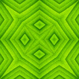 Pattern of green leaf Royalty Free Stock Photography