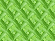 Pattern green leaf seamless abstract nature background. This is pattern green leaf seamless abstract nature background royalty free illustration
