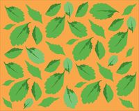 Pattern with green leaves. On orange background, many leaves of different sizes Stock Photo