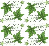 Pattern from green leaves.Seamless figure. Seamless figure. Openwork pattern from green leaves on white background royalty free illustration