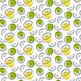 Pattern with green lime slices vector illustration
