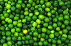 Pattern of green limes Stock Photos