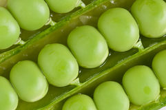 Pattern of green peas pods Stock Photo