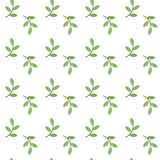 Pattern with green sprig Stock Photos