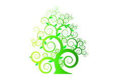 The pattern green tree with leaf on white background , vector ,illustration,image Stock Photo