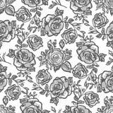 Pattern grey rose branch Royalty Free Stock Image